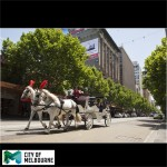 Horse and Carriage Ride Melbourne Swanston street