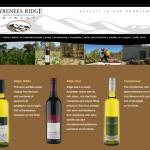 wine bottle website photographer